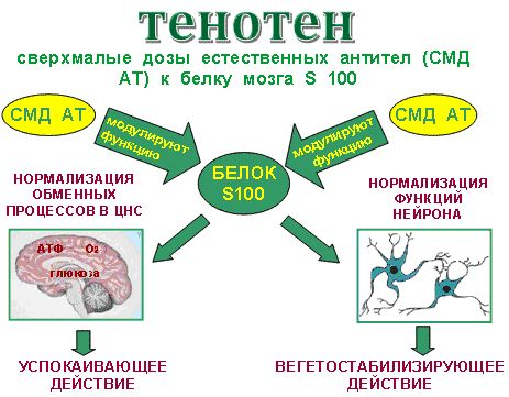 Тенотен применение против стресса