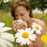 Травяные сборы при аллергических реакциях