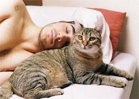 У владельцев кошек чаще развивается глаукома