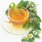 Успокаивающие травы и рецепты для человека