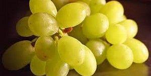 Виноград. Калорийность, польза, диеты