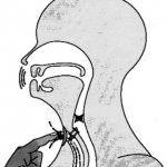 Восстановление голоса после удаления гортани
