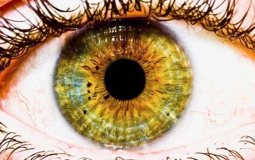 Восстановление зрения по методу Next Focus
