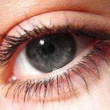 Здоровье глаз человека и зрение